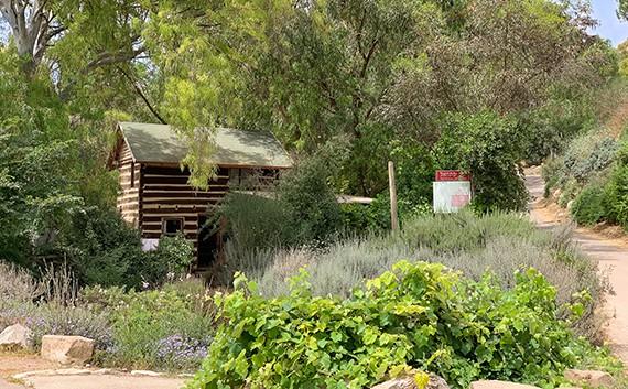 מרכז המבקרים של יקב יפתחאל, אלון הגליל