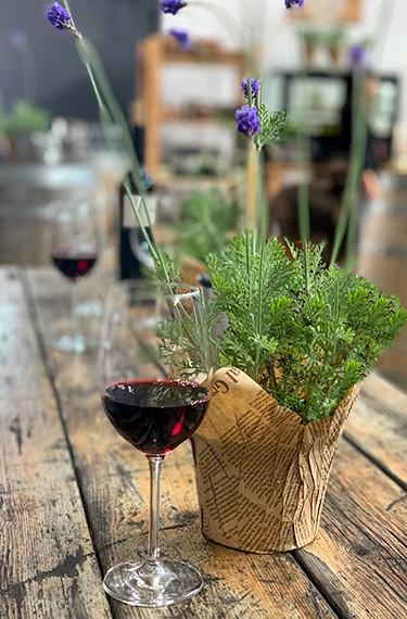 טעימות יין במרכז המבקרים של יקב פלטר, עין זיוון
