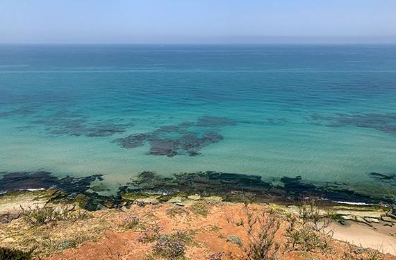 נוף הים הנשקף מהמצוק בשמורת חוף השרון