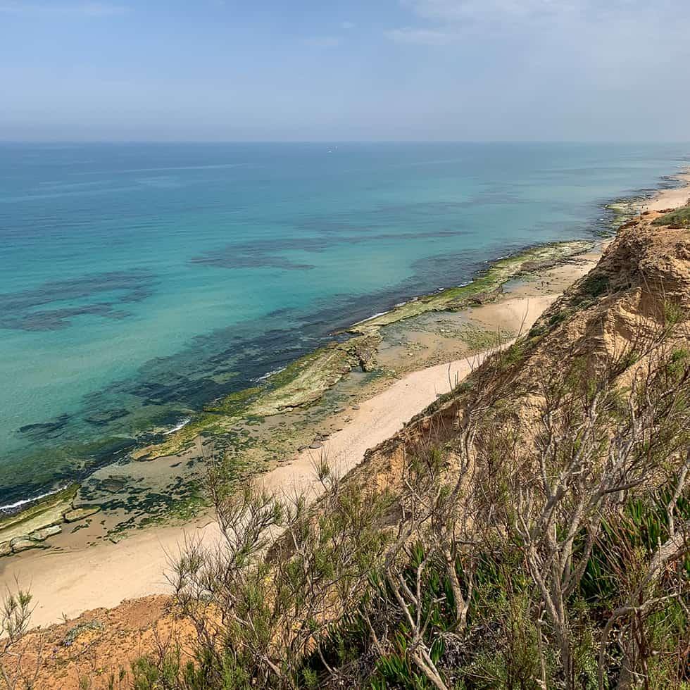 נוף ים הטורקיז הנשקף משמורת חוף השרון