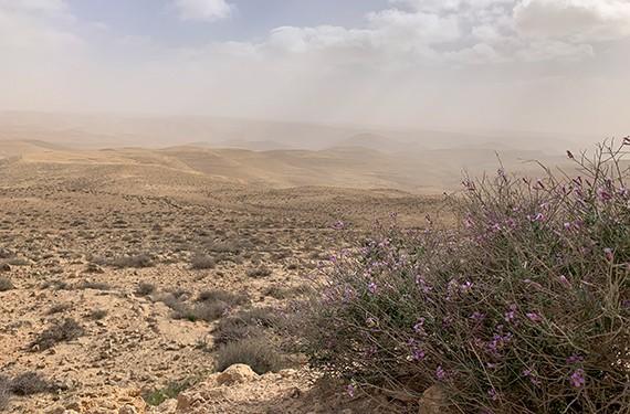 כביש 171, כביש רוח בהר הנגב המחבר בין צומת בה