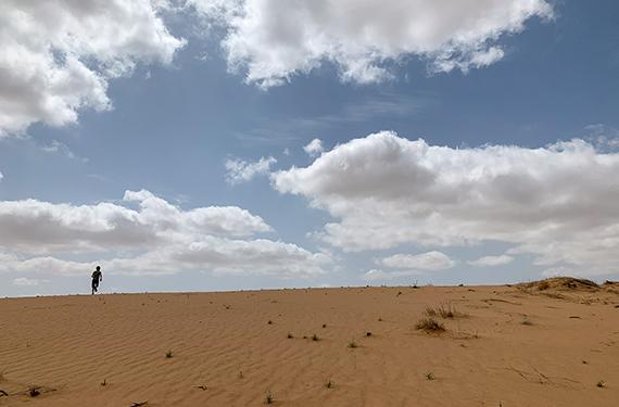 דיונת חול מרשימה בכניסה לבאר מילכה