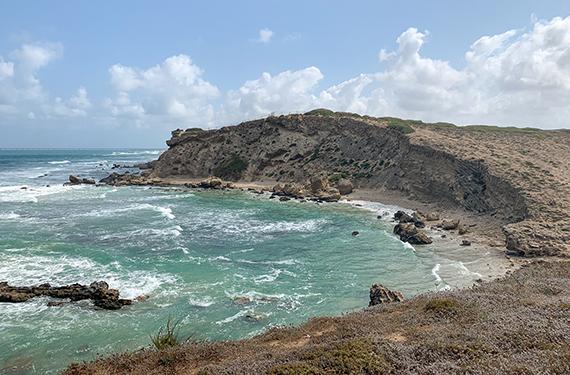 הנוף לים מהצוקים בשמורת טבע חוף גדור