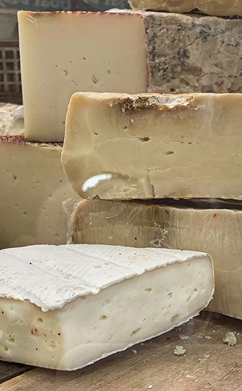 גבינות ממשק My Dear ביישוב כפר נטר