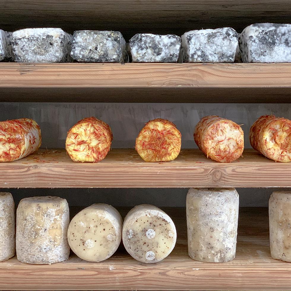 גבינות יפהפיות בחנות הגבינות של המחלבה חלב עם הרוח במתחם בורכה יודפת ביישוב יודפת