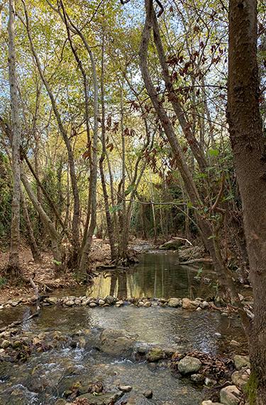 עין חרדלית, מסלול מים בנחל כזיב בגליל המערבי