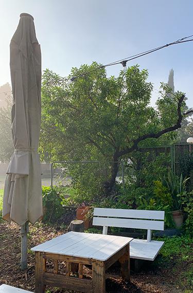 שולחן וספסל בחצר החמודה של בית הקפה גולדה בחצר בקיבוץ מרחביה ליד עפולה