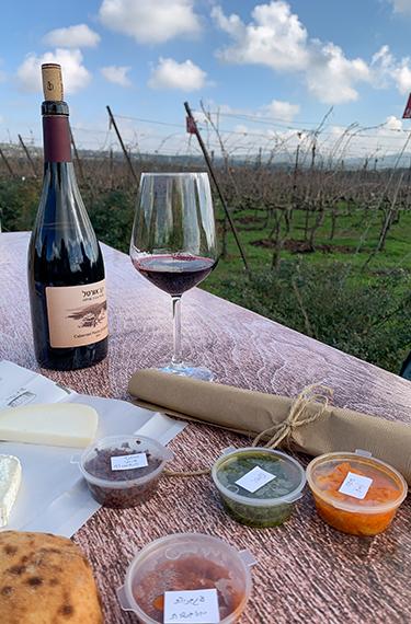ממרחים, פוקאצ'ה, בקבוק יין וכוס יין על רקע הכרמים של יקב אורטל