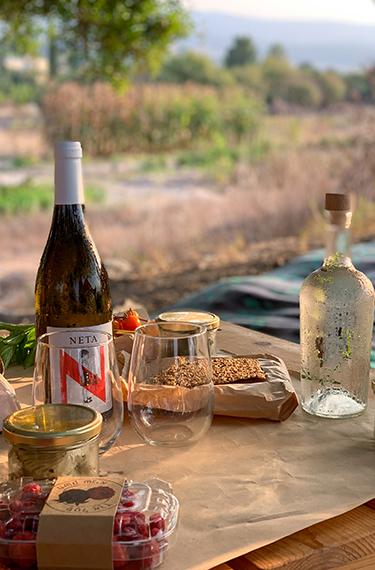 יין, כוסות, קרקרים, ירקות, גבינות ובקבוק זכוכית עם מים על שולחן עץ מול הנוף במשק שגיא פטל ארץ במושב תעוז