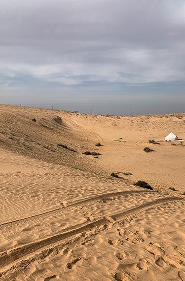 דיונת חול ענקית ליד היישוב באר מילכה באיזור פתחת ניצנה על גבול מצרים