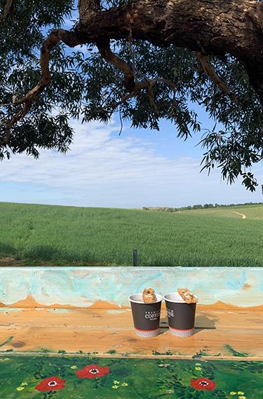 שתי כוסות קפה שחור בכוסות חד פעמיות עם עוגיית ביסקוטי עליהן על דלפק עץ מול נוף שמורת פורה בעגלת קפה השמורה 215