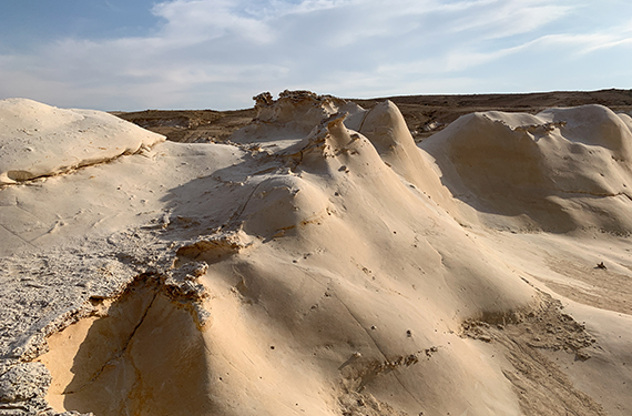 חמוקי ניצנה ליד גבול מצרים