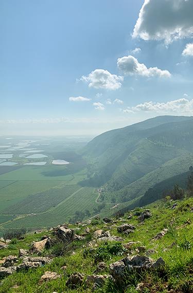 הנוף מכתף שאול בגלבוע: שדות ירוקים משובצים בעמק ובריכות דגים