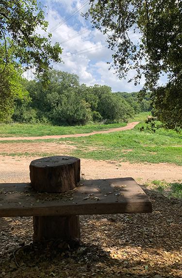 ספסל עץ פונה לנוף הירוק בפארק זכרון החדש מאחורי גן ירון