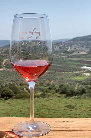 כוס יין רוזה אדמדם על הבר מול הנוף המהפנט ביקב לוטם בגליל