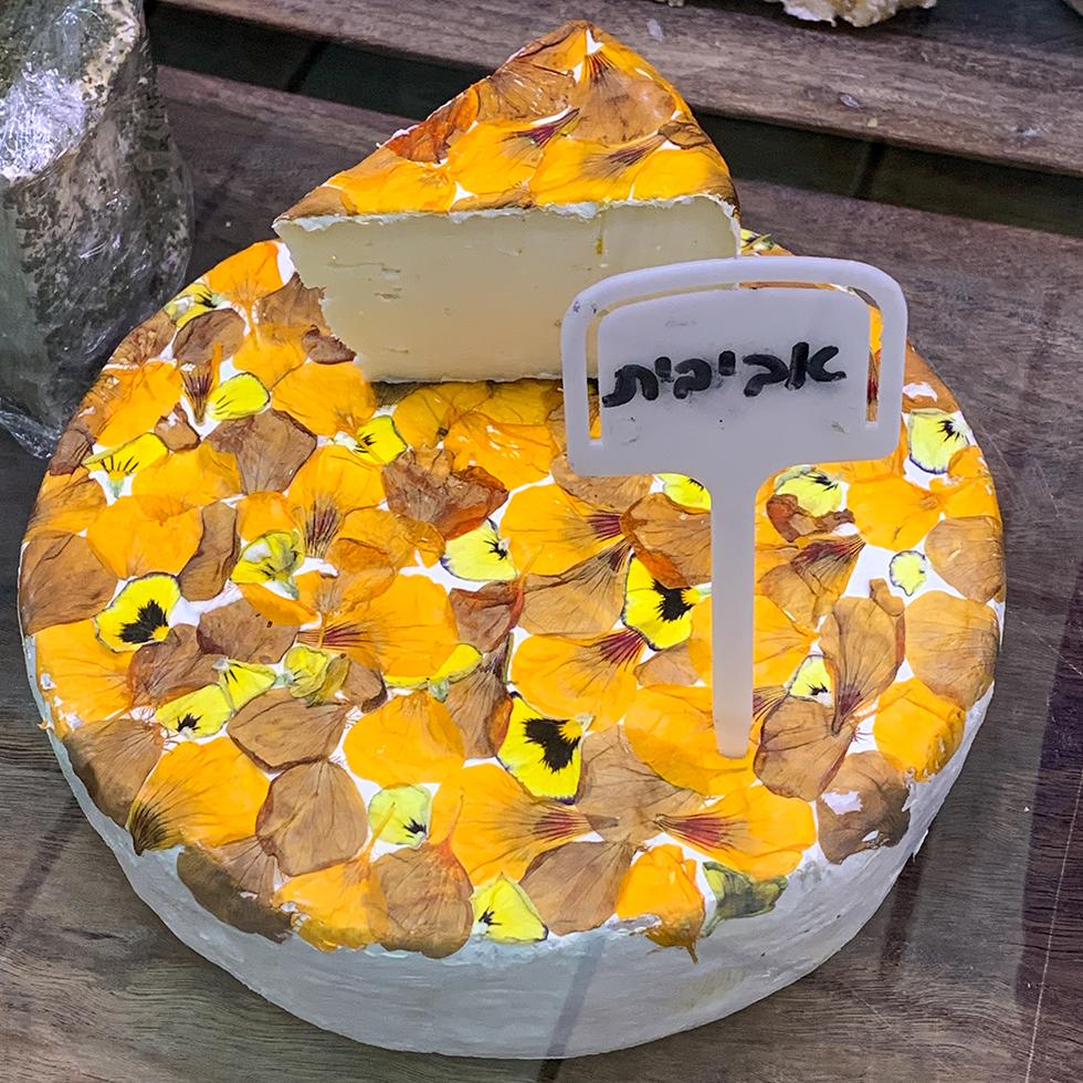 גבינה עגולה עטופה בפרחי מאכל צהבהבים-כתומים במחלבת מרקוביץ ביישוב נחלים