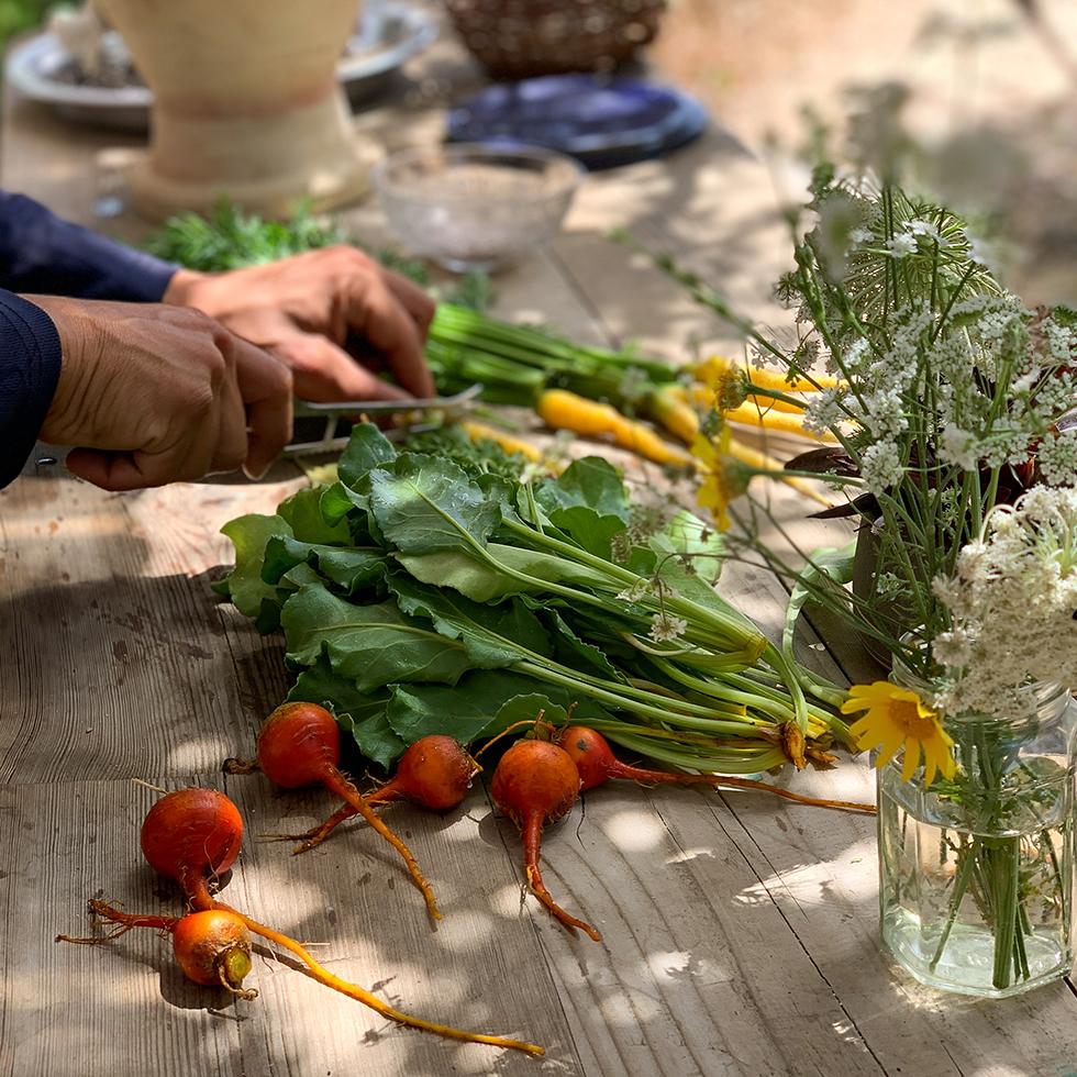 דוד מפטל ארץ חותך ירקות שאך קטף מהגינה במשק שגיא במושב תעוז