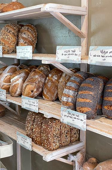 סוגי כיכרות לחם שונות על המדך במאפיית שלום עלחם בקיבוץ חולתה