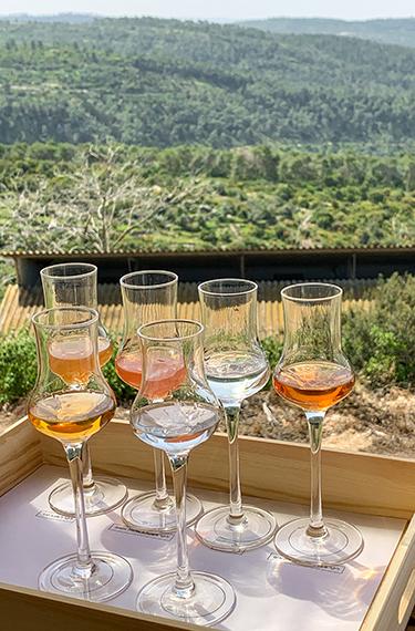 כוסות ליקר פירות על מגש עץ מול הנוף במרפסת היפהפיה של מזקקת הולנדר במושב בית מאיר